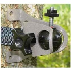 Direct Camera Post & Tree... 2